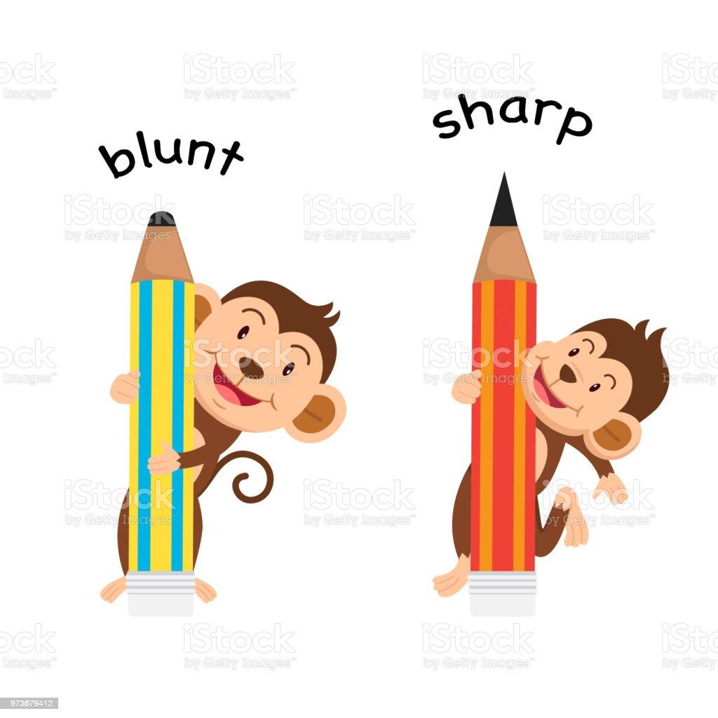Opposite sharp and blunt vector art illustration