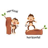 Opposite vertical and horizontal