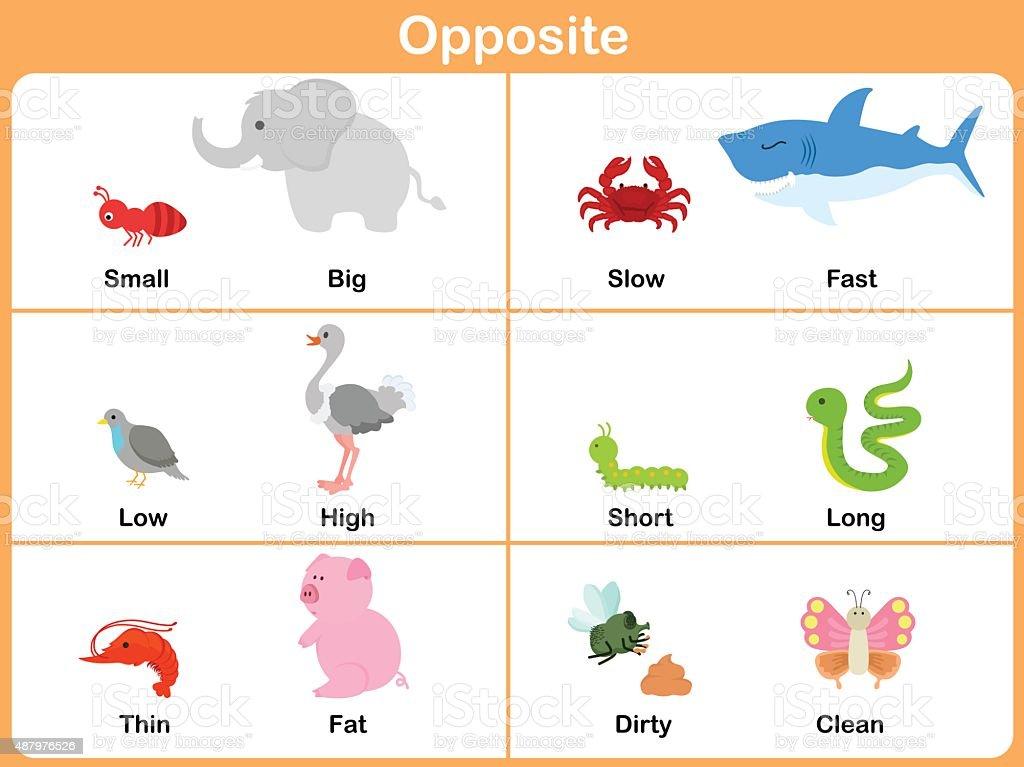 Ilustración de Frente A Los Animales De Edad Preescolar Hoja De ...