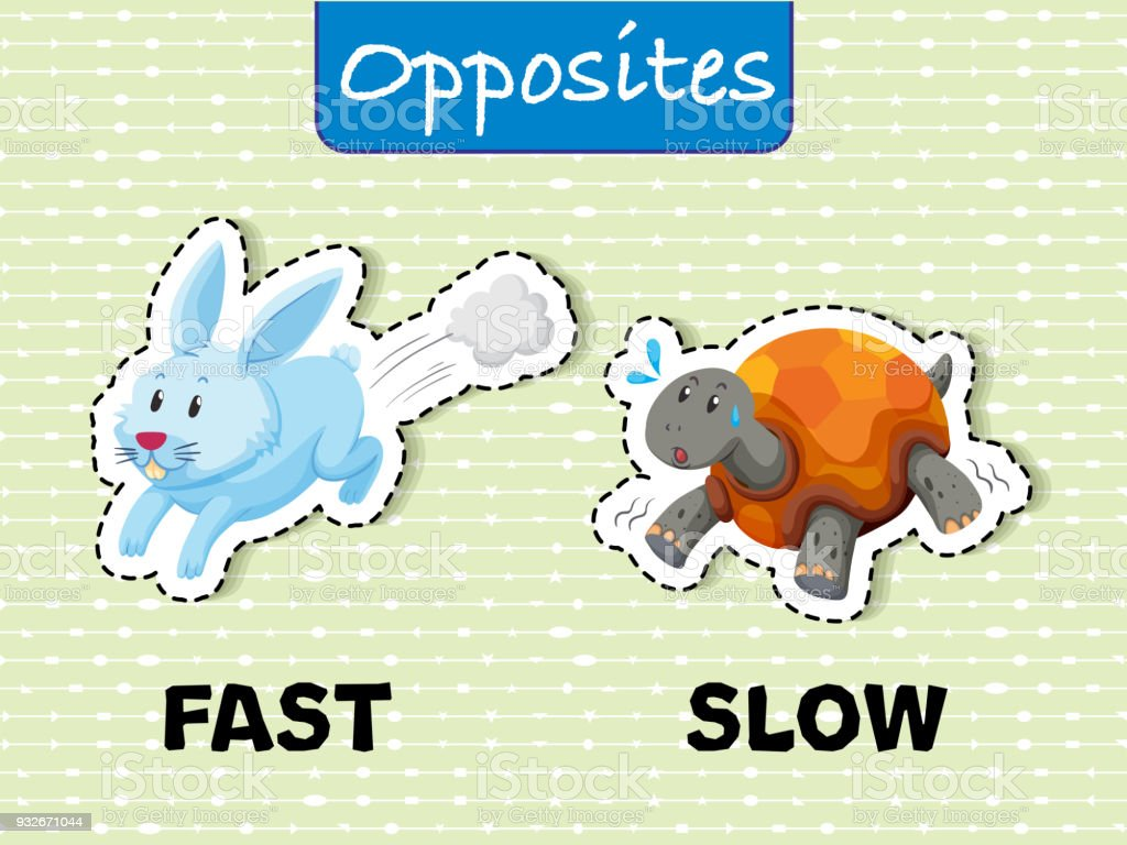 Opposite words for fast and slow vector art illustration