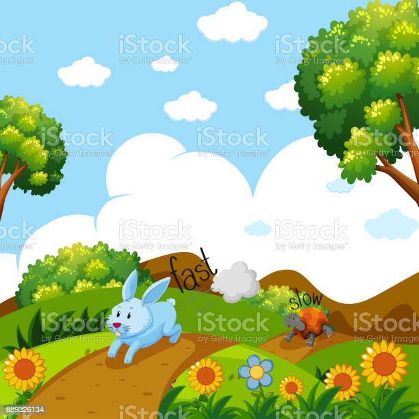 Opposite words for fast and slow with rabbit and turtle running vector id889326134?b=1&k=6&m=889326134&s=612x612&h=ab3x2egx mm3yvy5oxdmua6 t5erxt6bkrxfel0m7ws=