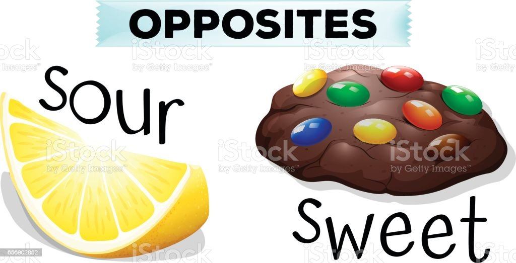 Opposite words with sour and sweet vector art illustration