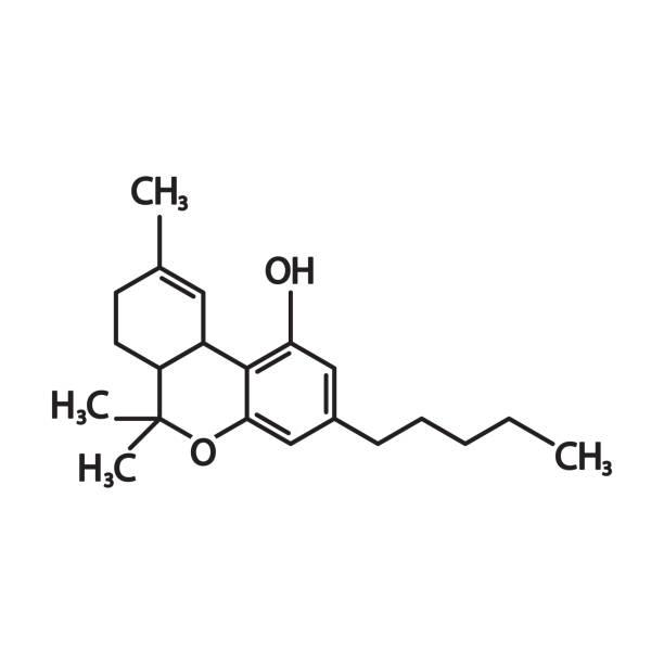 THC or tetrahydrocannabinol molecular structural chemical formula. Vector icon. THC or tetrahydrocannabinol molecular structural chemical formula. Vector icon. eps10. receptor stock illustrations