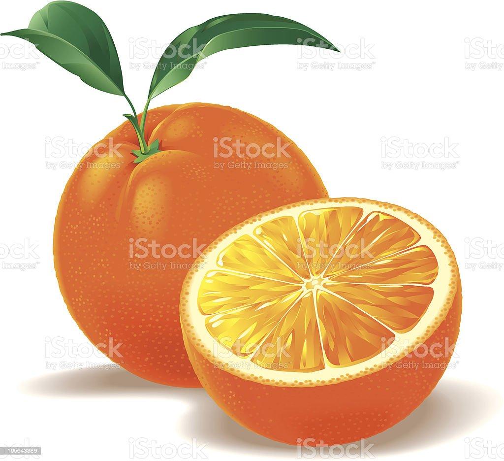 Orange and a half royalty-free stock vector art