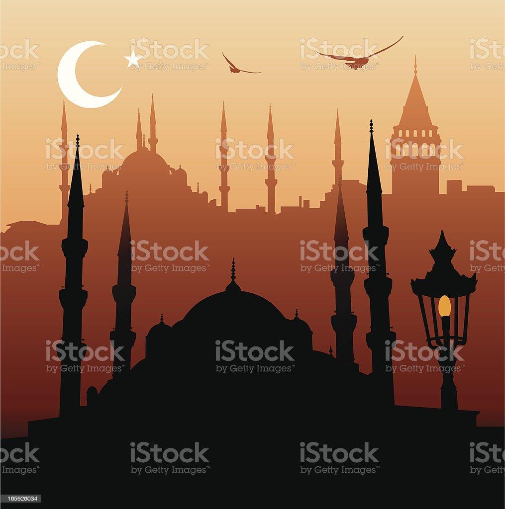 Orange and black Cartoon picture of Istanbul vector art illustration