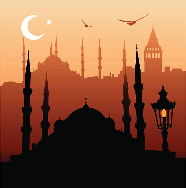 Orange and black Cartoon picture of Istanbul vector art illustration