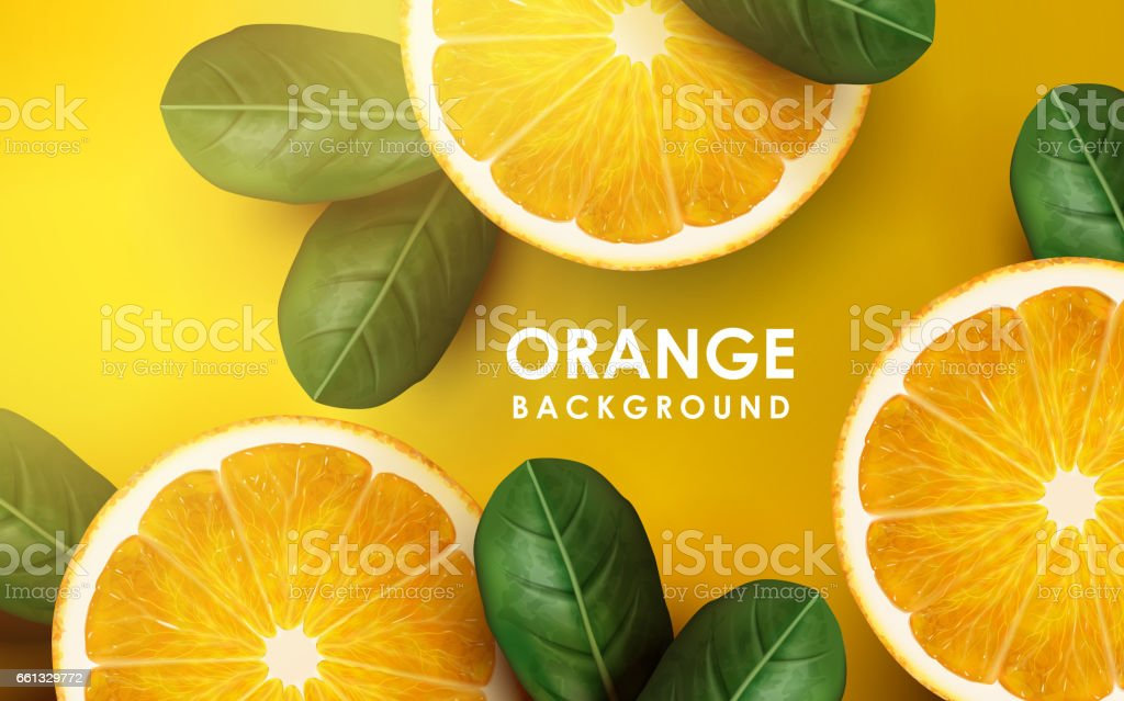 orange and leaves vector art illustration