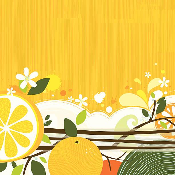 Orange backgound vector art illustration