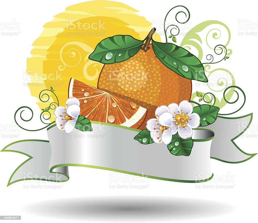 Orange banner royalty-free orange banner stock vector art & more images of citrus fruit
