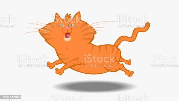 Orange cat leaping vector id1094558520?b=1&k=6&m=1094558520&s=612x612&h=db9q1chxfm1hwxjhy1kwcsogwfa3 kddqx rlmcqz2m=