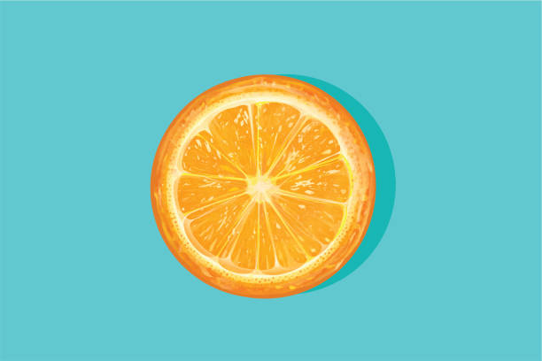 bildbanksillustrationer, clip art samt tecknat material och ikoner med orange halverad - apelsin