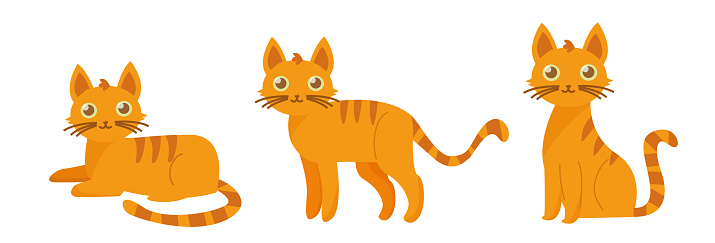 Orange cute cat in different poses. Vector cartoon flat illustration. Funny playful kitty isolated on white background.