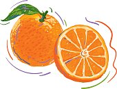 A vector illustration of an artistic sketch fresh orange.