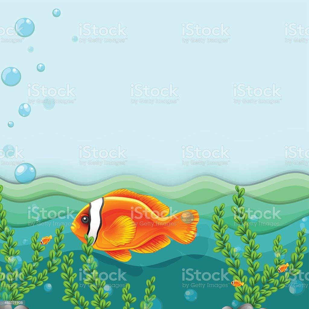 Orange fish under the sea vector art illustration