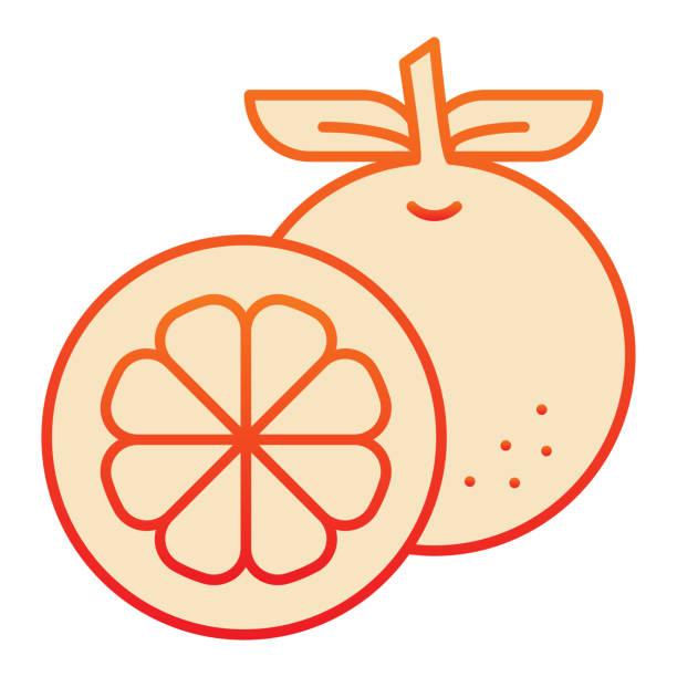주황색 플랫 아이콘입니다. 트렌디 한 플랫 스타일의 신선한 과일 오렌지 아이콘입니다. 웹 및 앱을 위해 디자인 된 건강한 비타민 그라데이션 스타일 디자인. eps 10. - 잘 익은 stock illustrations