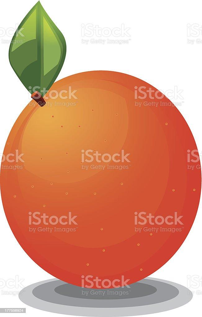 Orange Fruit clipart royalty-free orange fruit clipart stock vector art & more images of bright