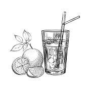 Orange fruit cocktail sketch. Orange slice. Citrus fruit juice image. Engraving style. Hand drawn vector illustration isolated on white background.