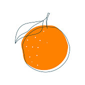 Vector illustration of an orange fruit in a flat design style and line art. Cut out design element on a white background.