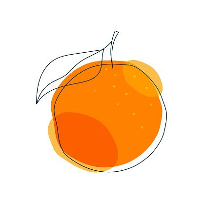 Orange fruit flat and line art illustration