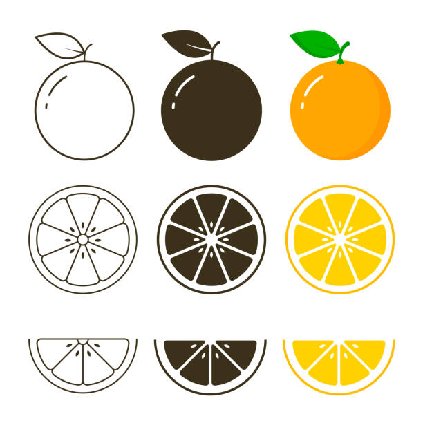orange fruit icon collection, vector outline and silhouette set, cut of orange - orange color stock illustrations