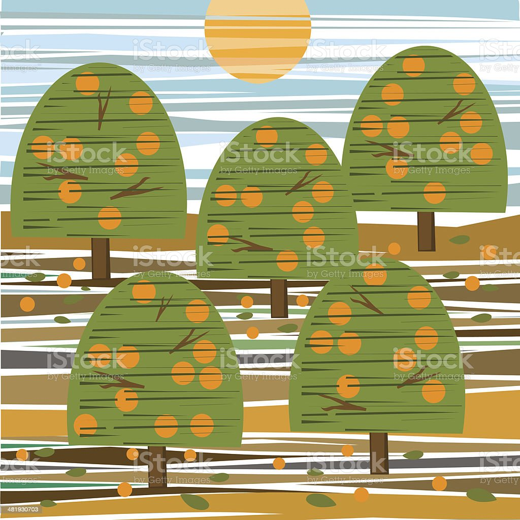 Orange Grove At Sunset royalty-free stock vector art