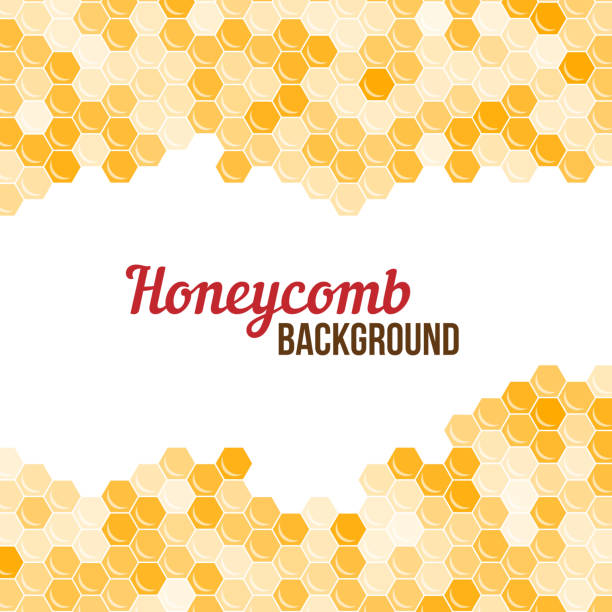 Orange honeycomb background. Orange honeycomb background. Abstract geometric vector illustration. bee borders stock illustrations