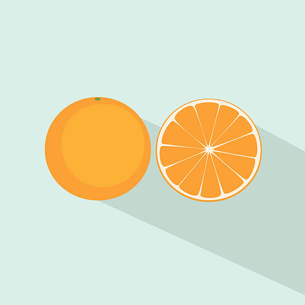 Royalty Free Half Orange Clip Art, Vector Images ...