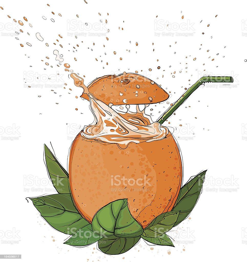 Orange Juice Splash royalty-free orange juice splash stock vector art & more images of botany