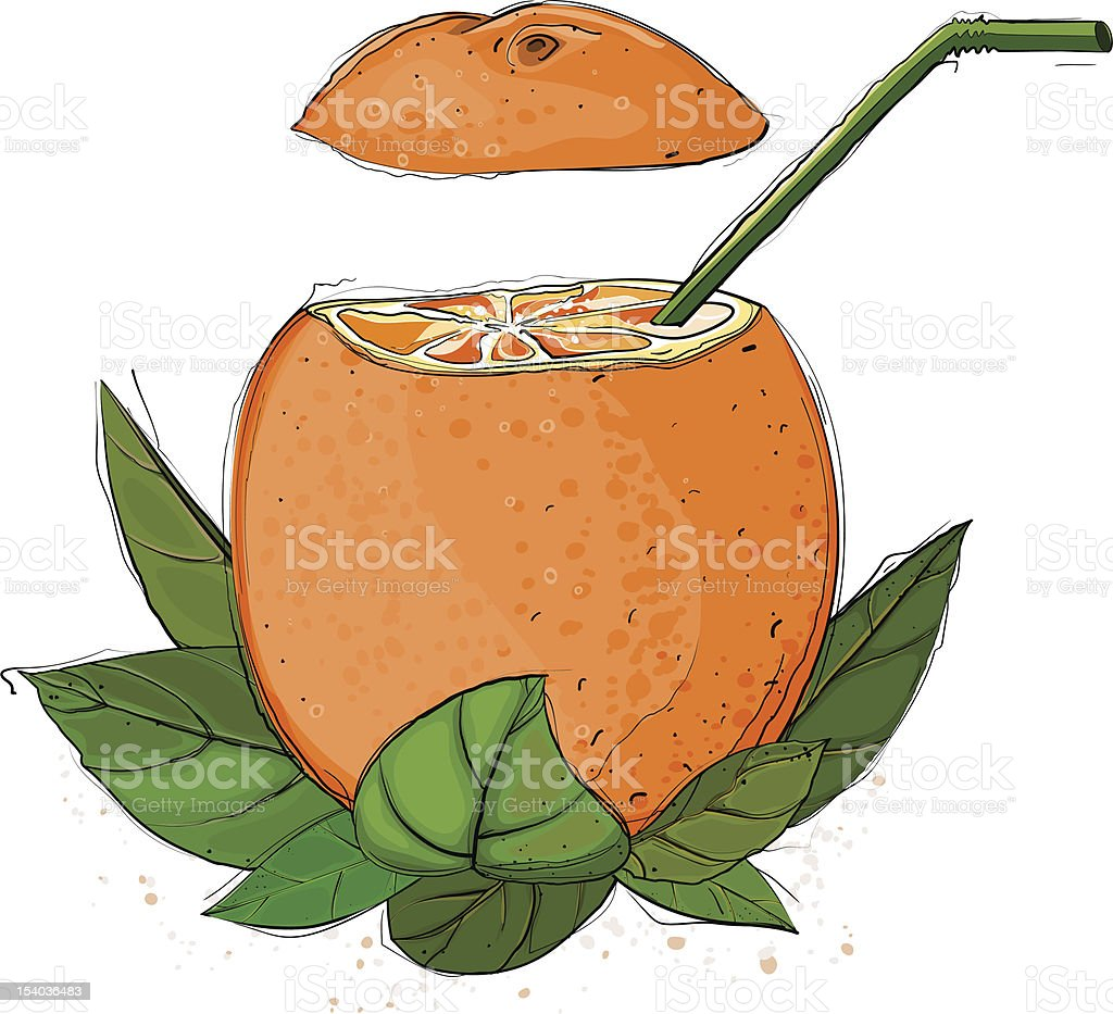 Orange Juice royalty-free orange juice stock vector art & more images of botany