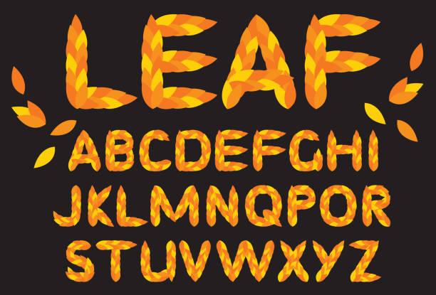 ilustrações, clipart, desenhos animados e ícones de a laranja sae do alfabeto estilizado font. ⁹ do outono. - fontes e tipografia