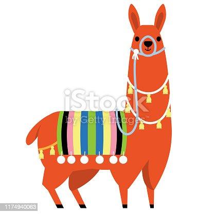 Colorful full length south American Llama
