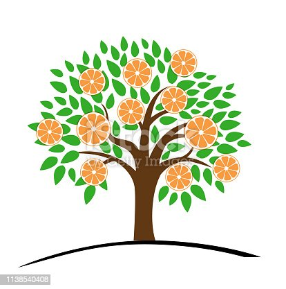 Orange or tangerine tree with green leaves. Vector illustration of a tree with ripe orange. Flat style.