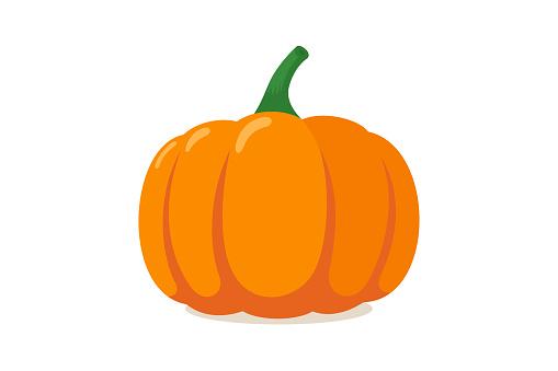 Orange pumpkin. Autumn halloween vegetable flat graphic icon isolated on white background. Vector illustration