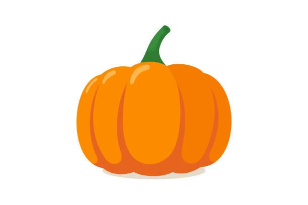 Orange pumpkin. Autumn halloween vegetable flat graphic icon isolated on white background. Vector illustration Orange pumpkin. Autumn halloween vegetable flat graphic icon isolated on white background. Vector colorful illustration pumpkin stock illustrations