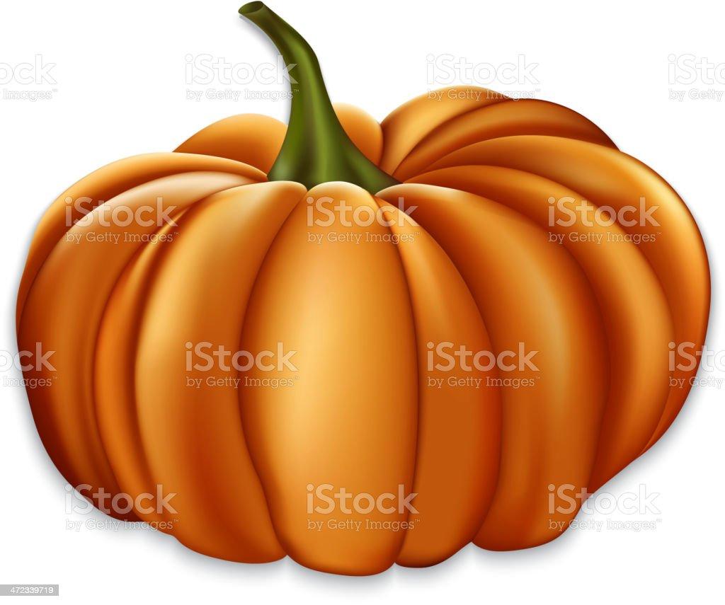 Orange pumpkin. royalty-free orange pumpkin stock vector art & more images of art