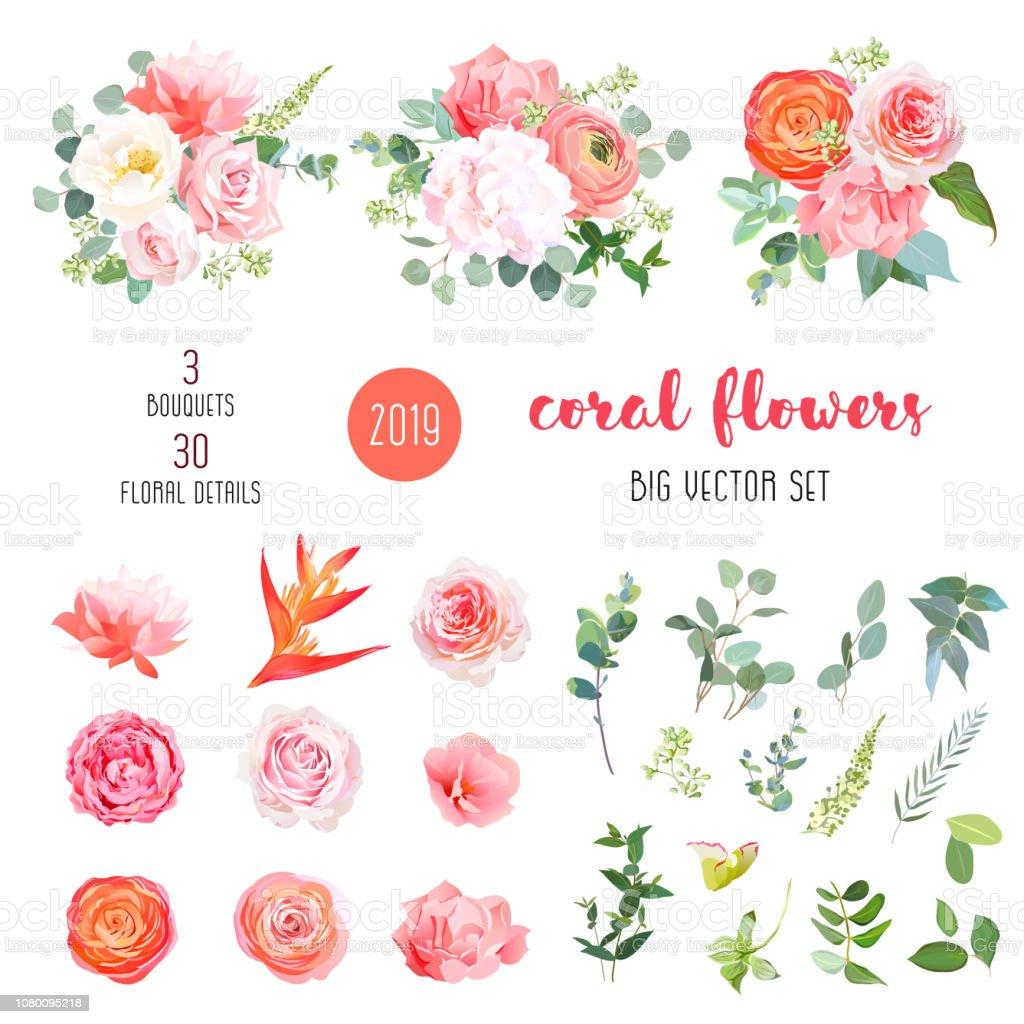 Orange ranunculus, pink rose, hydrangea, coral carnation, garden flowers