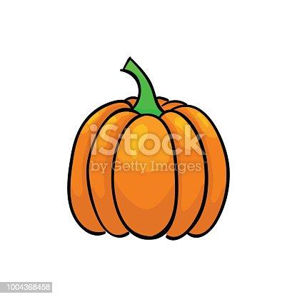 Orange ripe pumpkin isolated on white background. Vegetables vector illustration.