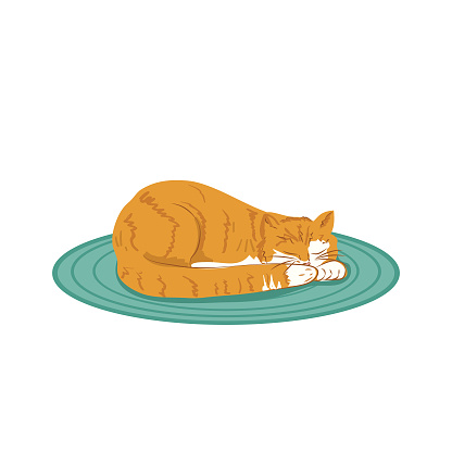 Orange tabby Cat Sleeping On A Rug