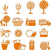 Orange Tree Growing and organic farming black & white icons