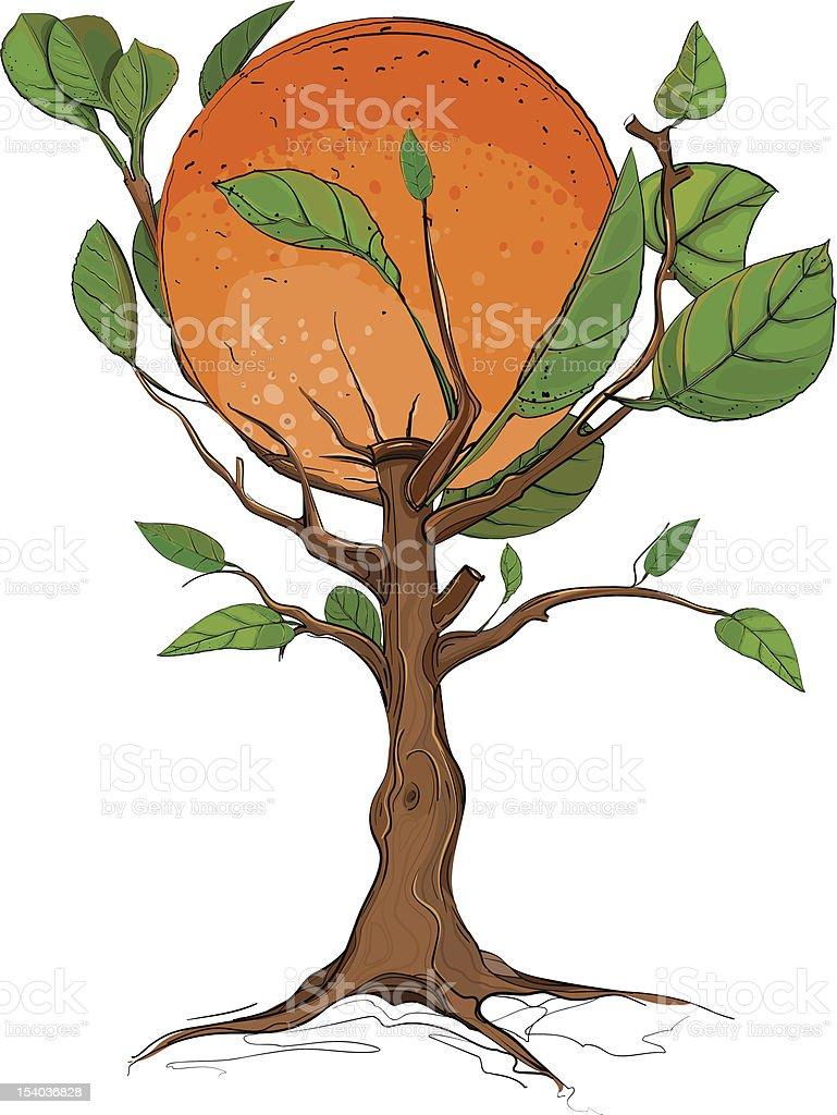 Orange Tree royalty-free stock vector art