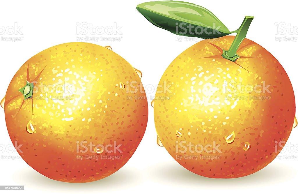 Orange royalty-free orange stock vector art & more images of backgrounds