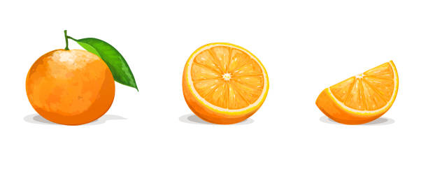 Bекторная иллюстрация Orange with two slices isolated on white background. Vector illustration