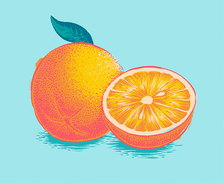 Engraved illustration of an orange woodcut, screen printing. Isolated on neutral background. Hand drawn vector illustration. Retro style ink sketch.