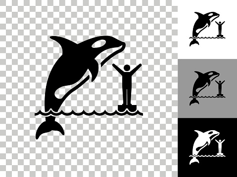 Orca Icon on Checkerboard Transparent Background