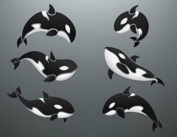 Orca logotype set Vector Illustration Of Orca logotype set killer whale stock illustrations