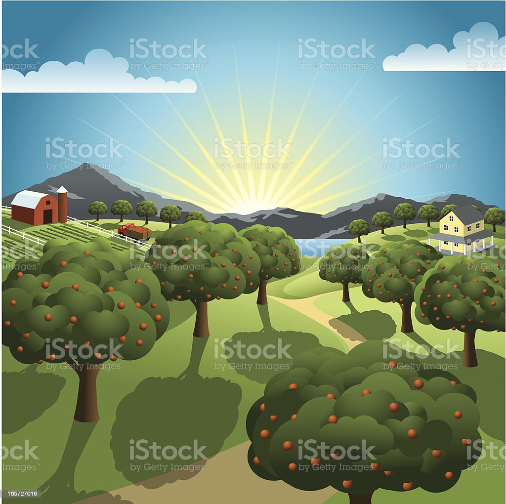 Orchard and Farm vector art illustration
