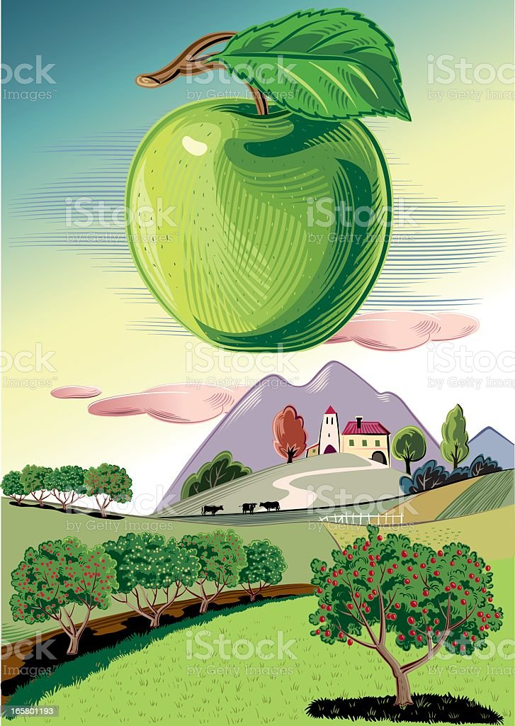 Orchard with green Apple vector art illustration