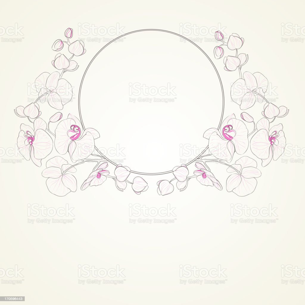 Orchid curly frame. royalty-free orchid curly frame stock vector art & more images of abstract