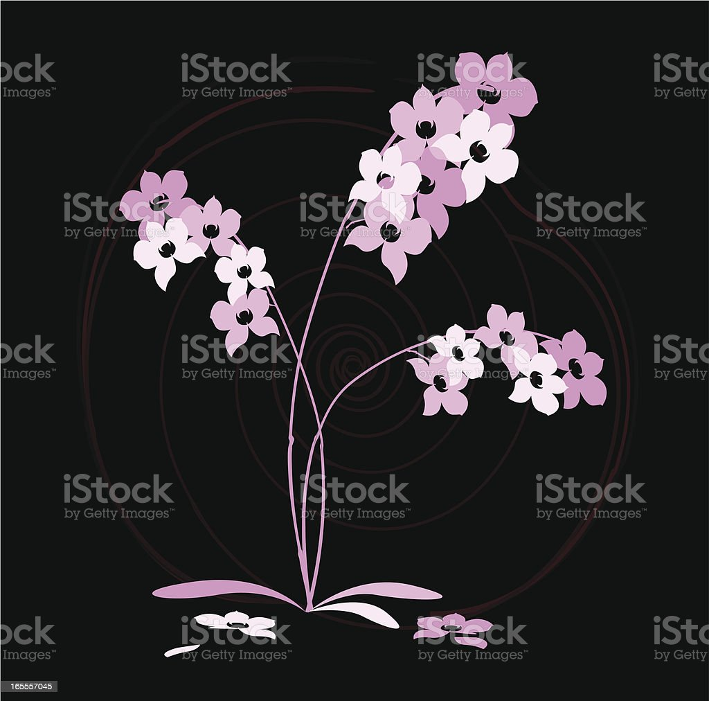 Orchid Japanese Abstract royalty-free orchid japanese abstract stock vector art & more images of abstract