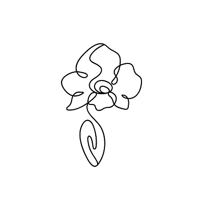 orchid logo icon. orchid outline.single orchid black and white. Phalaenopsis orchid flower in one line art drawing style. Beautiful orchid line art pattern. Exotic flowers drawing on simple background